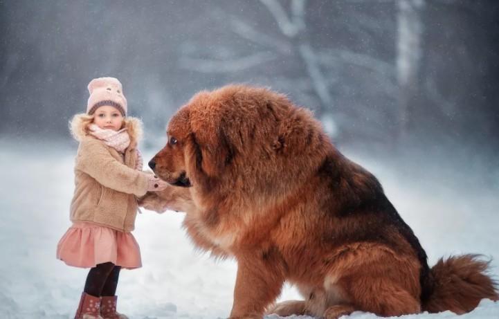 Как можно назвать большую собаку девочку