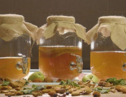 Чайный гриб целебные свойства. Польза и противопоказания. Как приготовить чайный гриб в домашних условиях, как ухаживать.