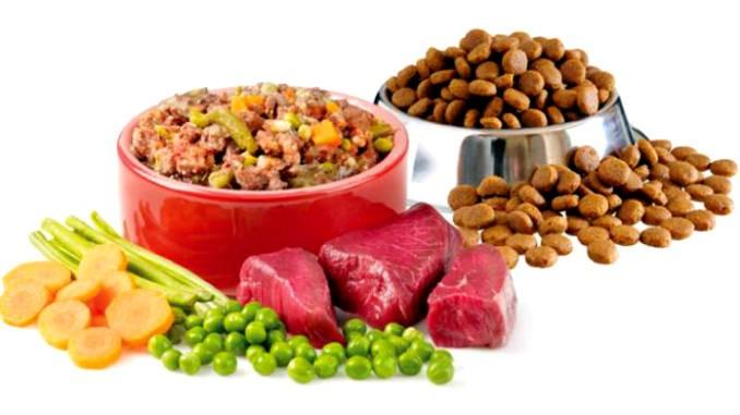 Чем лучше кормить собаку натуралкой или кормом