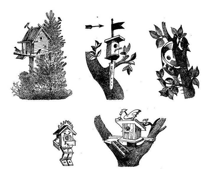 Месяц зимних гостей: девятый месяц лесного года