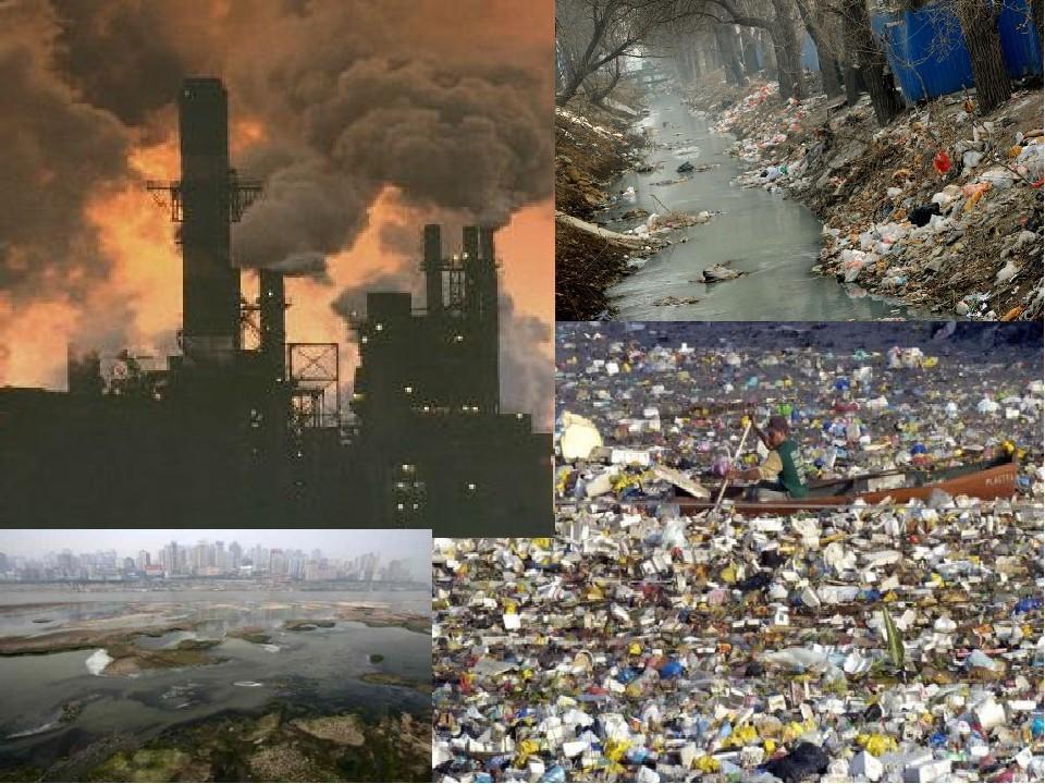 Экология проблемы современного мира
